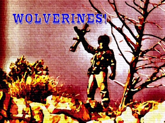 Wolverines-Logo-560