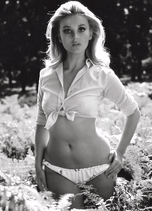 barbara bouchet - photo #13