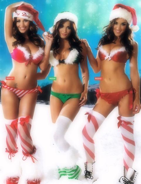 Christmas-HollyPeers-andFriends-LS-001